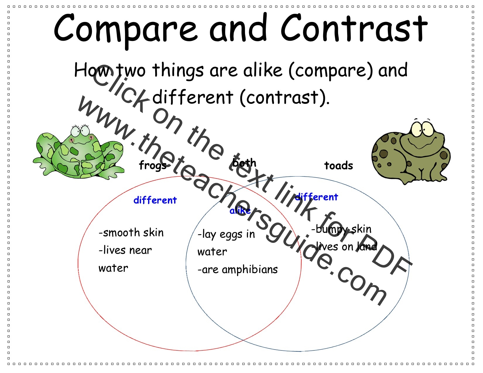 Compare And Contrast Grade 2 2nd Grade Compare And