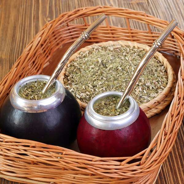 All About Yerba Mate