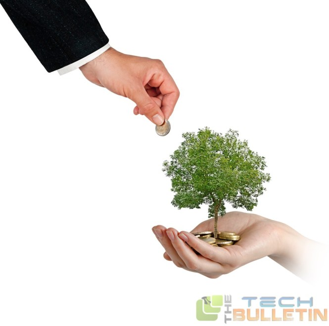 SeedFunding-tree-too-good