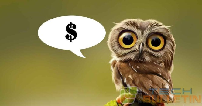 tiny-owl-funding-wide eyes