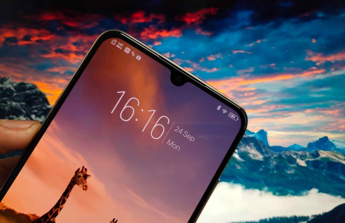 Vivo V11 Pro Drop Notch