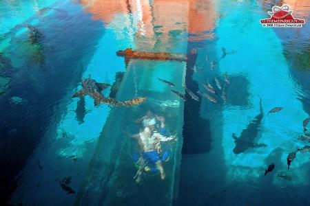 underwater hotel atlantis bahamas full hd maps locations another