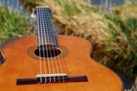 2d4r33 acoustic guitar