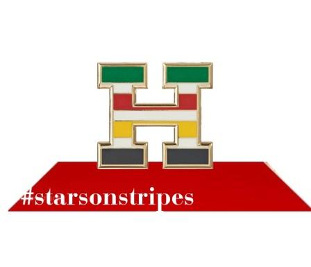 Hudson's Bay Stars on Stripes