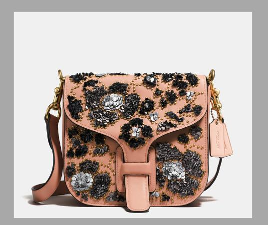 Coach and Rodarte Courier Bag Glovetanned Leather and Leather Sequin