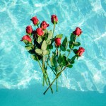 roses in blue water