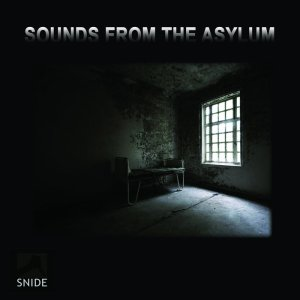Sounds From The Asylum