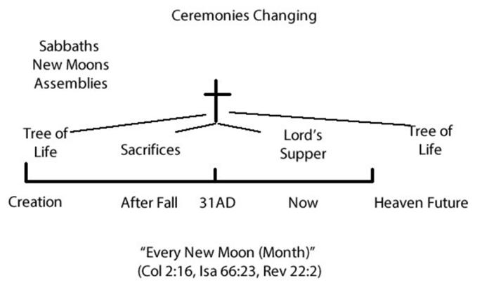 new moon chart