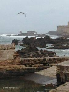 Essaouira_wind_city_of_africa