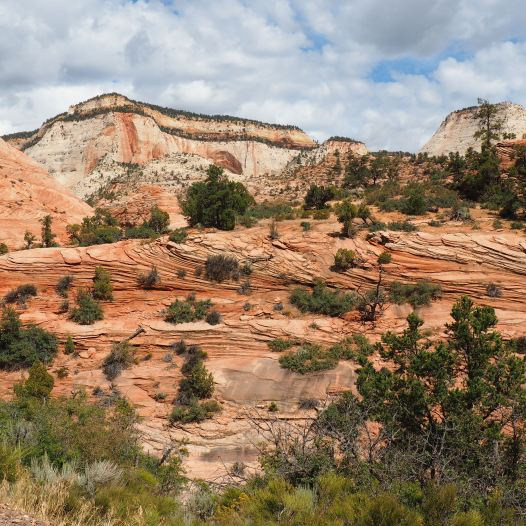 View along the route 9, Zion National Park, Utah