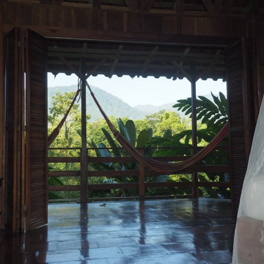View from the room on La Amistad, Selva Bananito