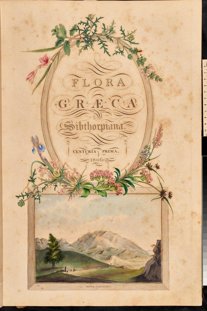Σελίδα τίτλου του α' τόμου της Flora Graeca. Απεικονίζεται ο Παρνασσός.