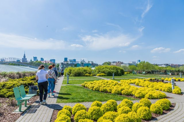 The Gardens on the roof of University of Warsaw's library