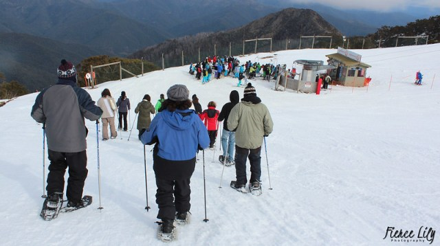 Skiing is one of the best things to do in victoria in winter