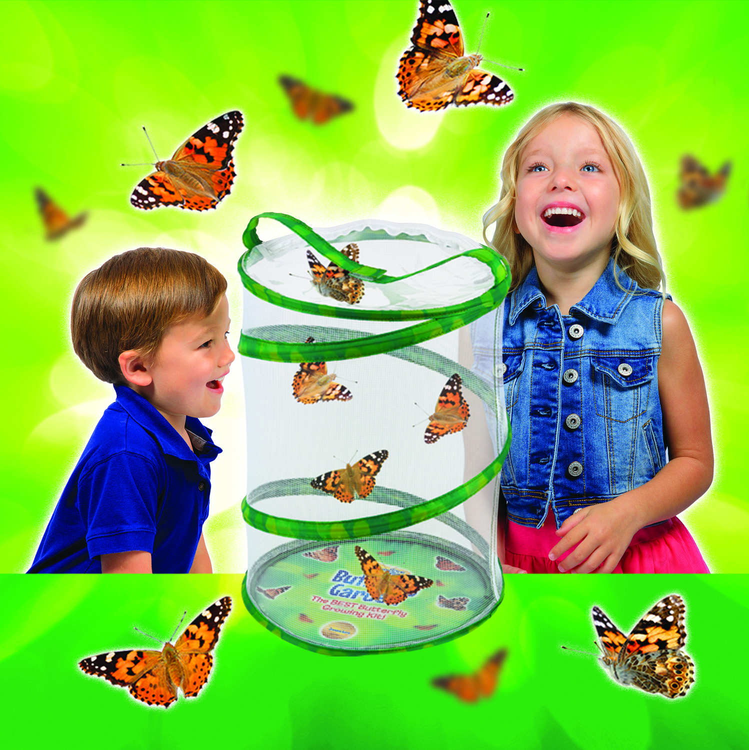 Watch Caterpillars Transform Into Butterflies With This