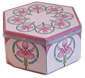 The Fuschia Box