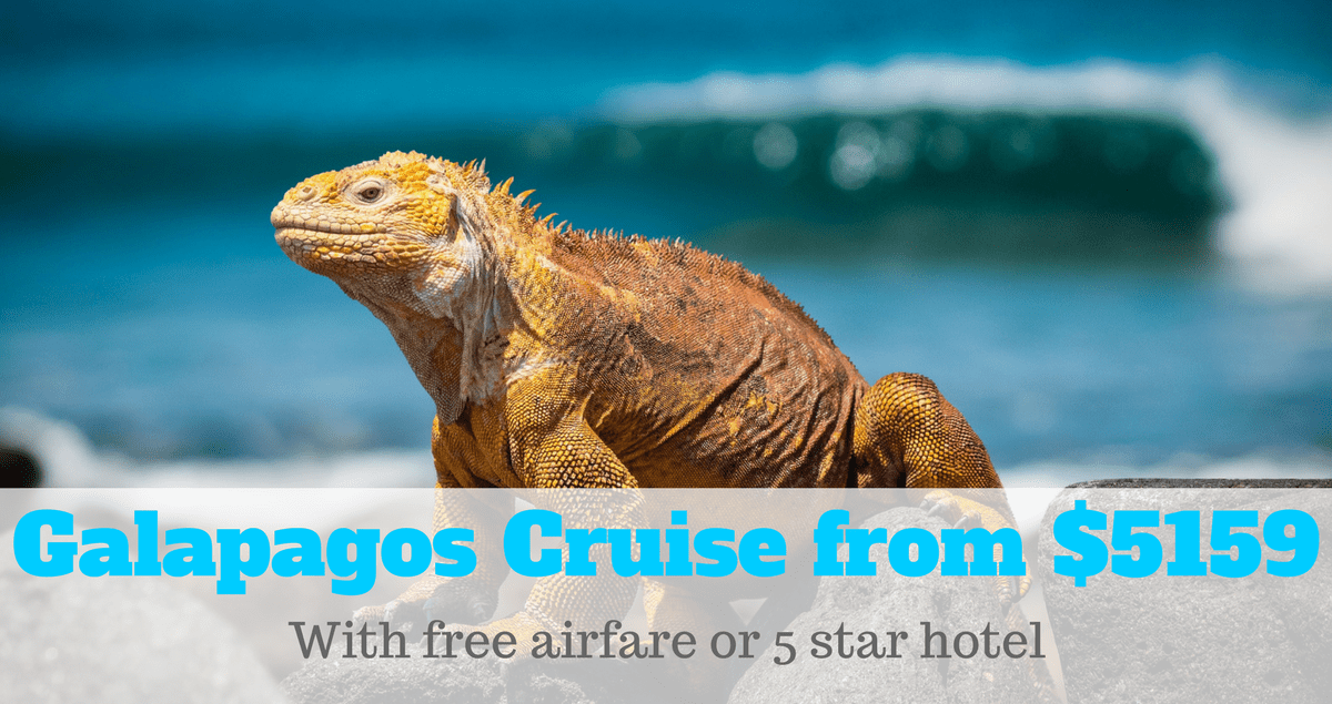 galapagos cruise sale