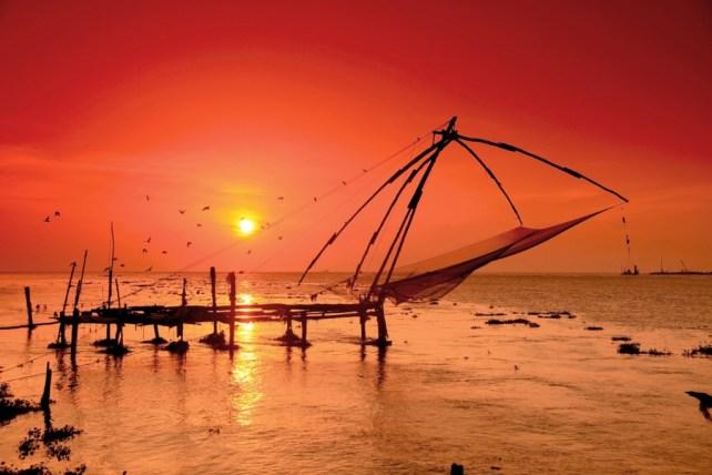 things to do in cochin - fishing nets