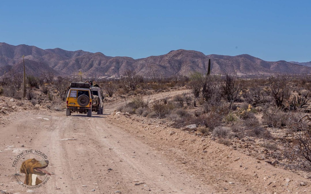 """Featured Travel Video of the Week: Follow the Hound """"Baja Days"""""""