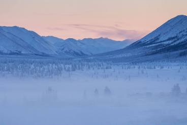 Oymyakon forests -45c Photo Credit: Maarten Takens/Flickr