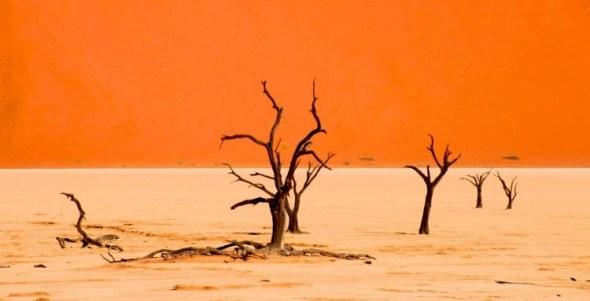 namibia sossusvlei deadvlei || visit Namibia | things to do in Namibia