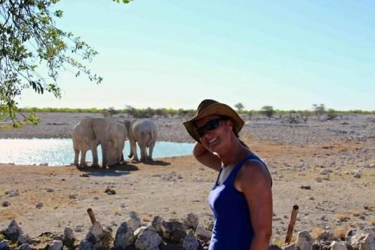 Elephants Okaukujo waterhole Etosha Namibia