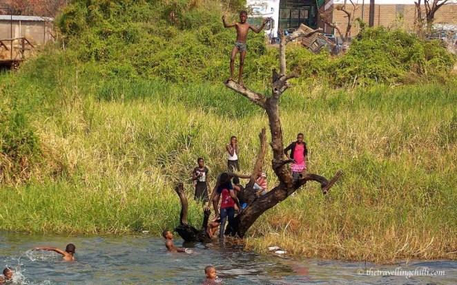 botswana chobe river