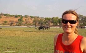 botswana chobe elephant national park