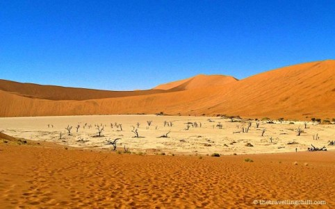 namibia deadvlei sossusvlei highlights | visit Namibia | things to do in Namibia
