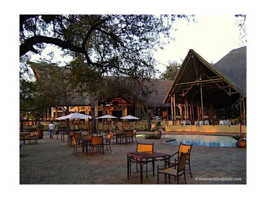 Chobe Safari Lodge Kasane Botswana