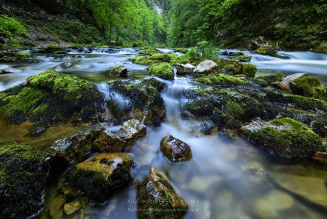 slovenia-vintgar-gorge