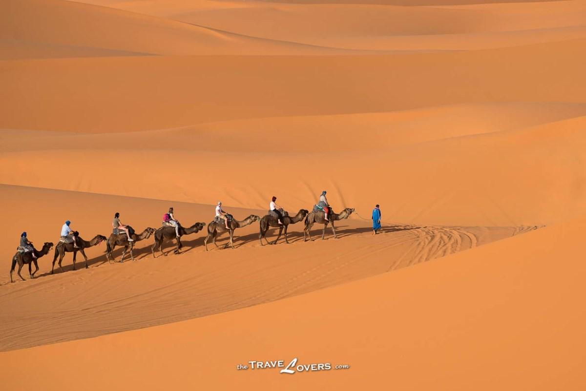 【摩洛哥】撒哈拉沙漠行程規劃懶人包