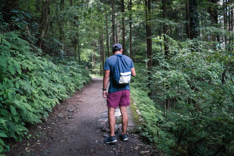Walking Through Mt. Takao Trail 6