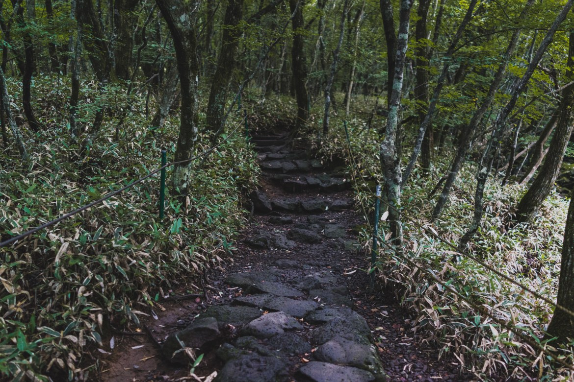 The Gwaneumsa Trail on Mt Hallasan Jeju Island