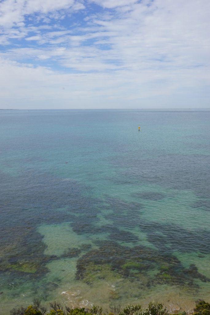 Mornington Peninsula Ocean
