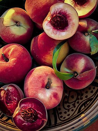 peach trees for sale buy peach trees