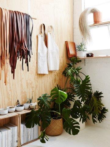 houseplants-are-back-as-chic-decor-3