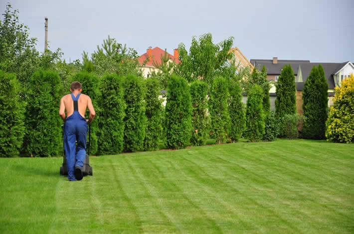 Finding the Right Professional Landscaping and Paving Services