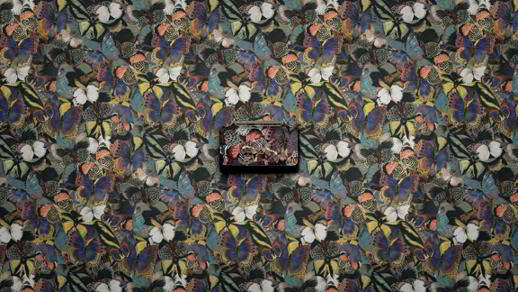 16534-women-s-accessories-camubutterfly
