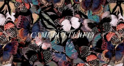 6-13-Camubutterfly