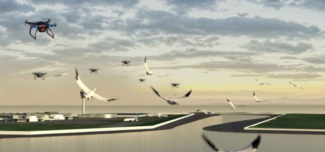 Bird-deterring drones and game consoles inspire the future of flight