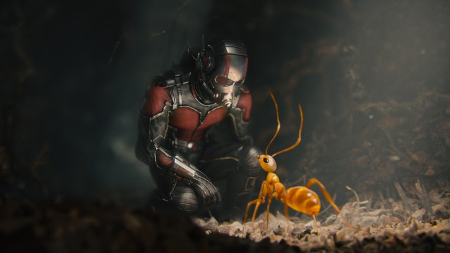 Marvel's Ant-Man Ant-Man/Scott Lang (Paul Rudd) w/ one of his crazy ants. Photo Credit: Film Frame © Marvel 2015