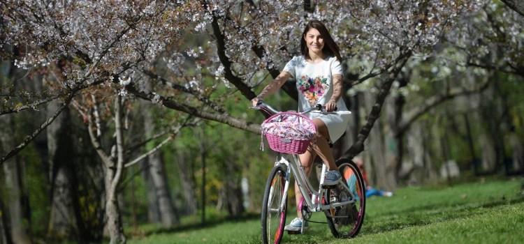 """Noi trenduri: Cum să îți """"tunezi"""" bicicleta cu ajutorulFabulous Baskets– Galerie FOTO"""