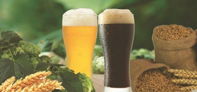 România, în top 10 mari producători de bere din UE