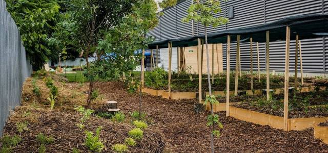 Kaufland își transformă acoperișurile, parcările și exteriorul magazinelor în grădini urbane pentru comunitate