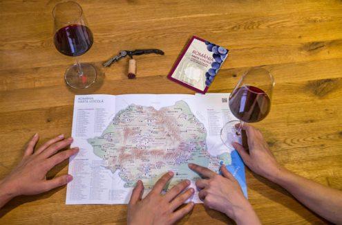 Cum arată Harta viticolă a României? CrameRomania.ro lansează o bază de date bilingvă a cramelor de la noi!