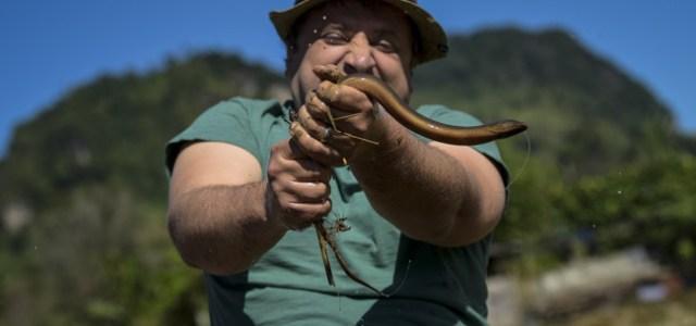 De la gătit carne de șarpe, la spălat de elefanți. Așa arată probele din Asia Express!