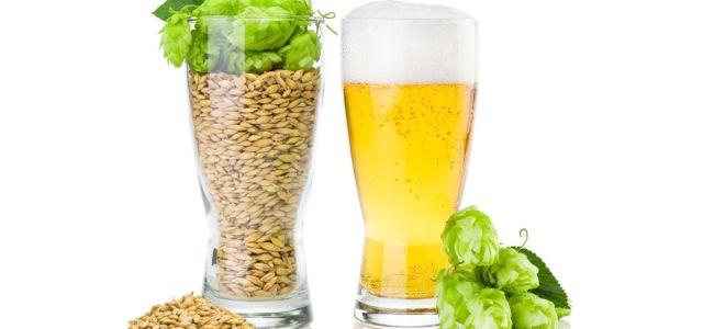 Trei surse de antioxidanți la îndemână pe timpul verii