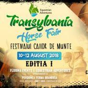 Festivalul Cailor de Munte – Transylvania Horse Fair, pe Valea Avrigului!