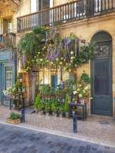 Bordeaux9